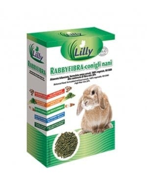 Lilly - RABBYFIBRA Dwarf Rabbits