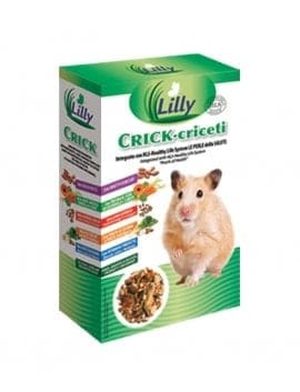 Lilly - CRICK Hamsters