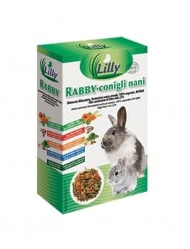 Lilly - RABBY Dwarf Rabbits