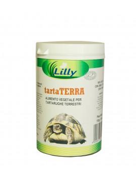 TARTA TERRA